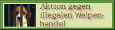 Aktion gegen illegalen Welpenhandel und Betrug!