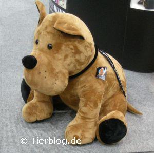 teddyhund.jpg